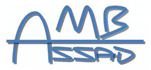 logo-ambassad